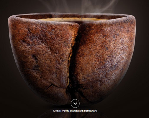 Riconoscimento all'impegno dell'Albero del Caffè